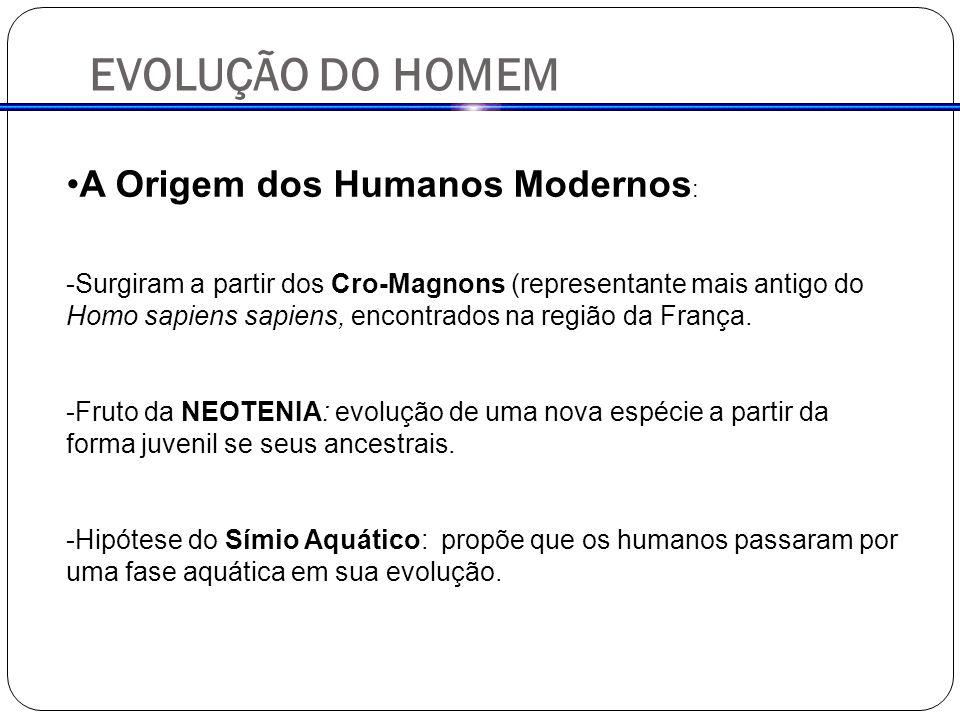 EVOLUÇÃO DO HOMEM A Origem dos Humanos Modernos: