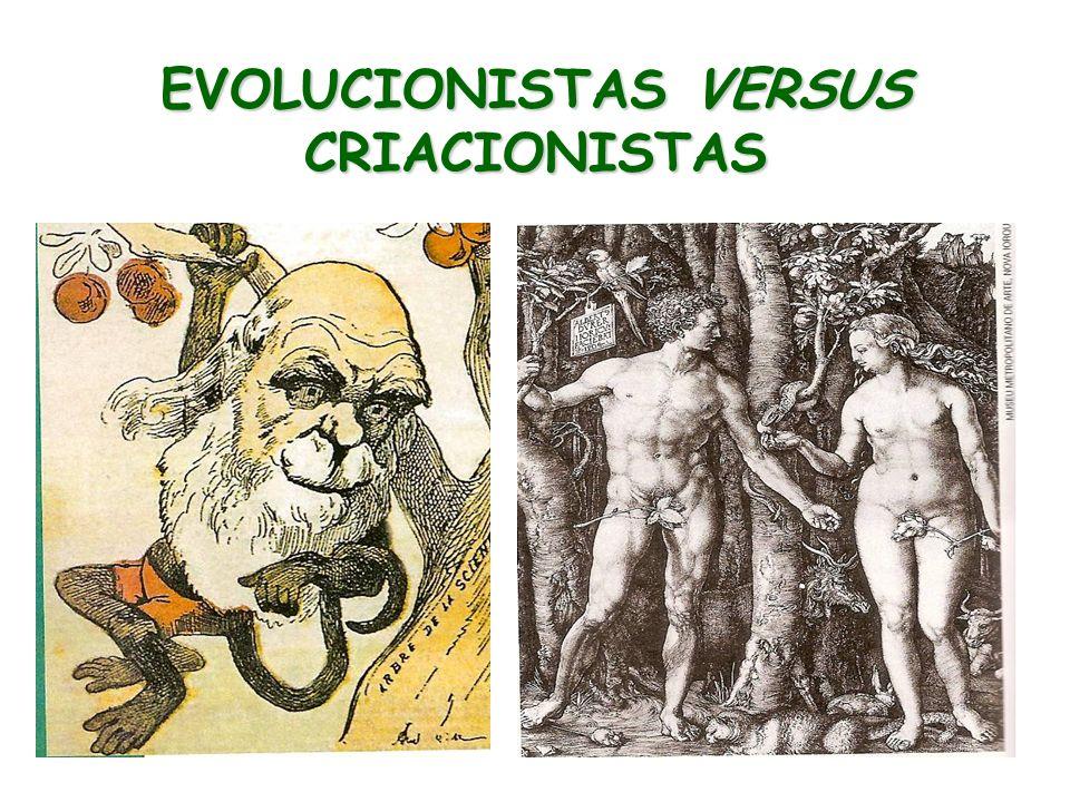 EVOLUCIONISTAS VERSUS CRIACIONISTAS
