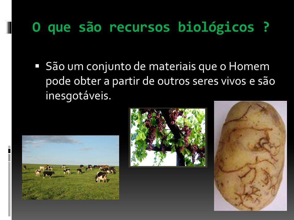 O que são recursos biológicos