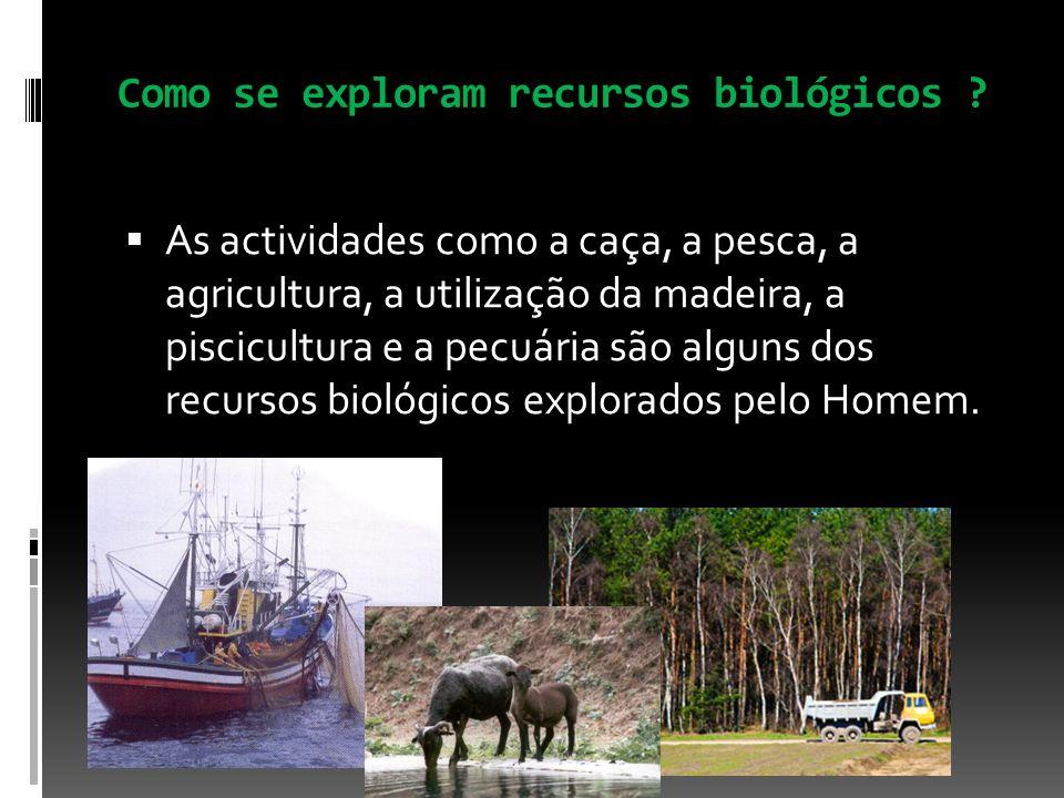 Como se exploram recursos biológicos