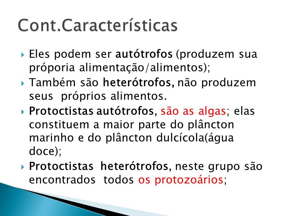 Cont.Características Eles podem ser autótrofos (produzem sua próporia alimentação/alimentos);