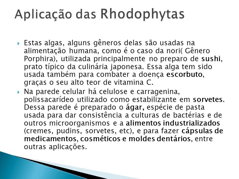 Aplicação das Rhodophytas