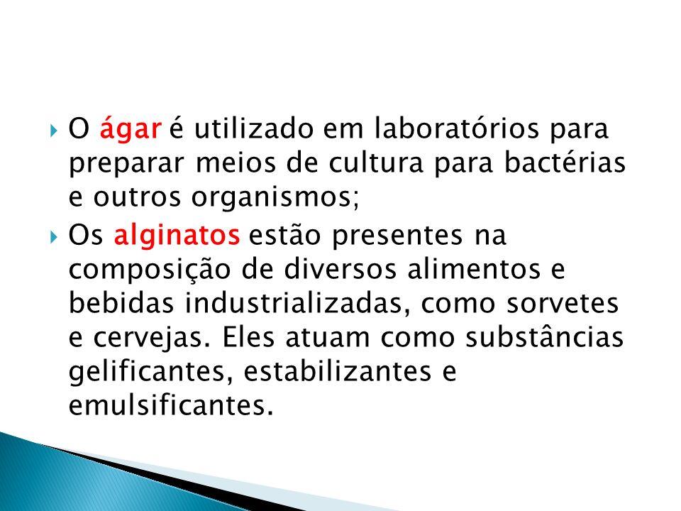 O ágar é utilizado em laboratórios para preparar meios de cultura para bactérias e outros organismos;
