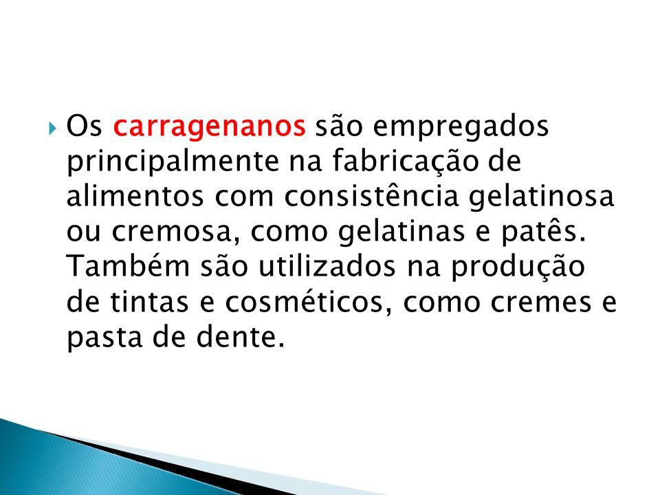Os carragenanos são empregados principalmente na fabricação de alimentos com consistência gelatinosa ou cremosa, como gelatinas e patês.