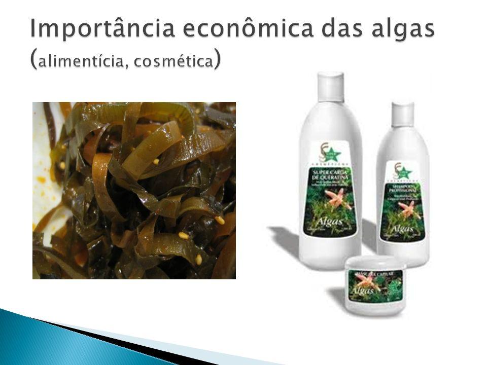 Importância econômica das algas (alimentícia, cosmética)