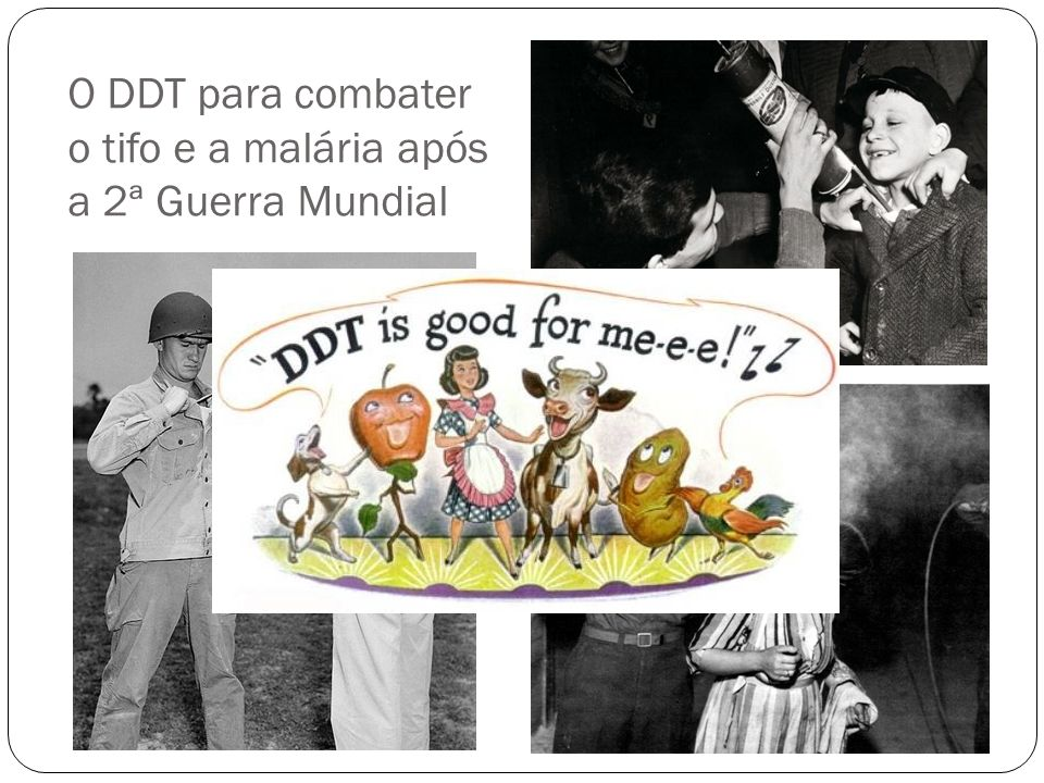 O DDT para combater o tifo e a malária após a 2ª Guerra Mundial