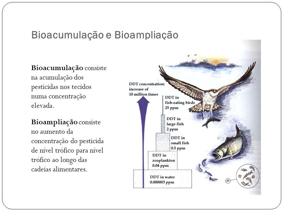 Bioacumulação e Bioampliação