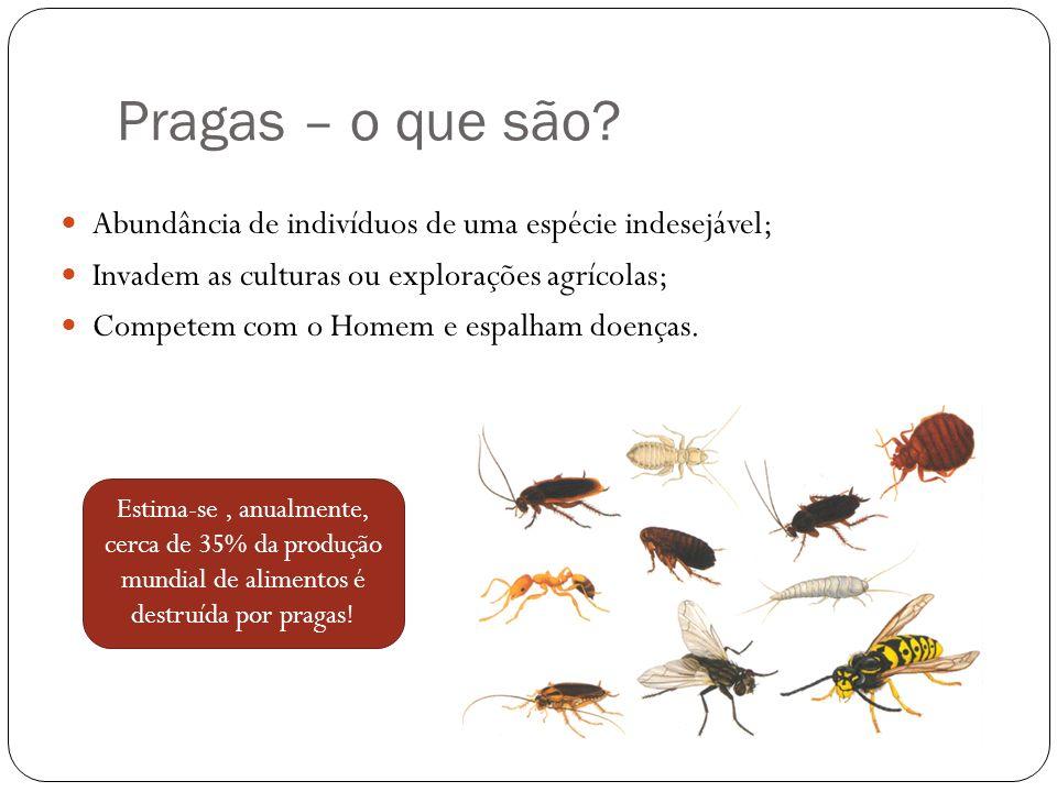 Pragas – o que são Abundância de indivíduos de uma espécie indesejável; Invadem as culturas ou explorações agrícolas;