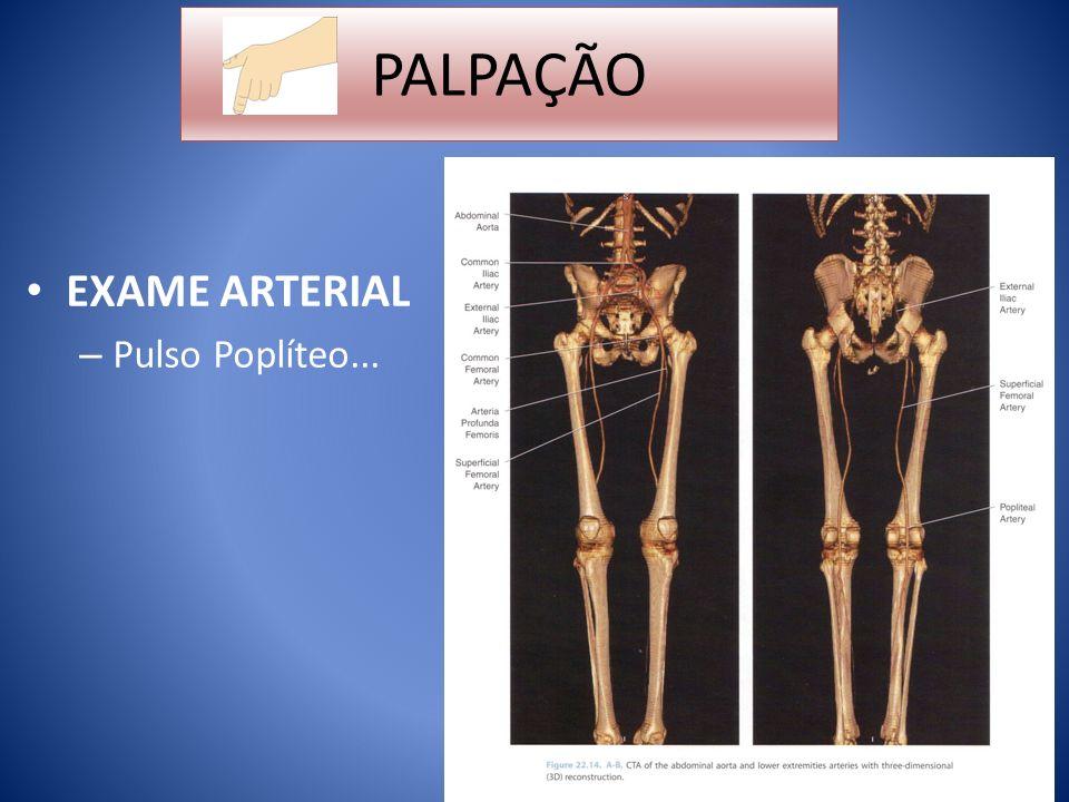 PALPAÇÃO EXAME ARTERIAL Pulso Poplíteo...