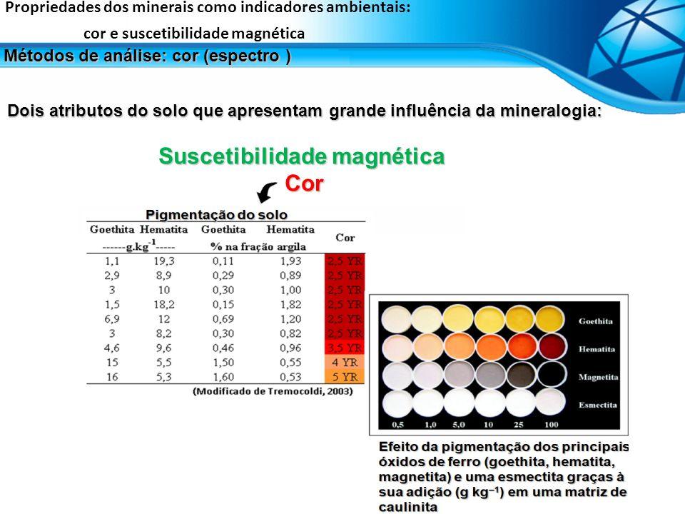 Suscetibilidade magnética