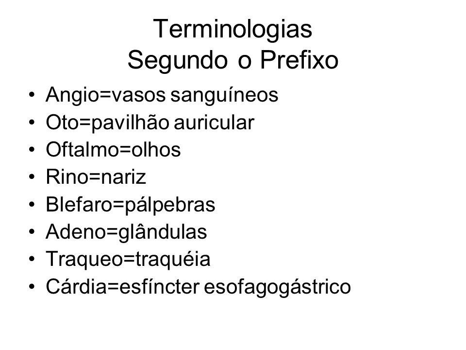 Terminologias Segundo o Prefixo