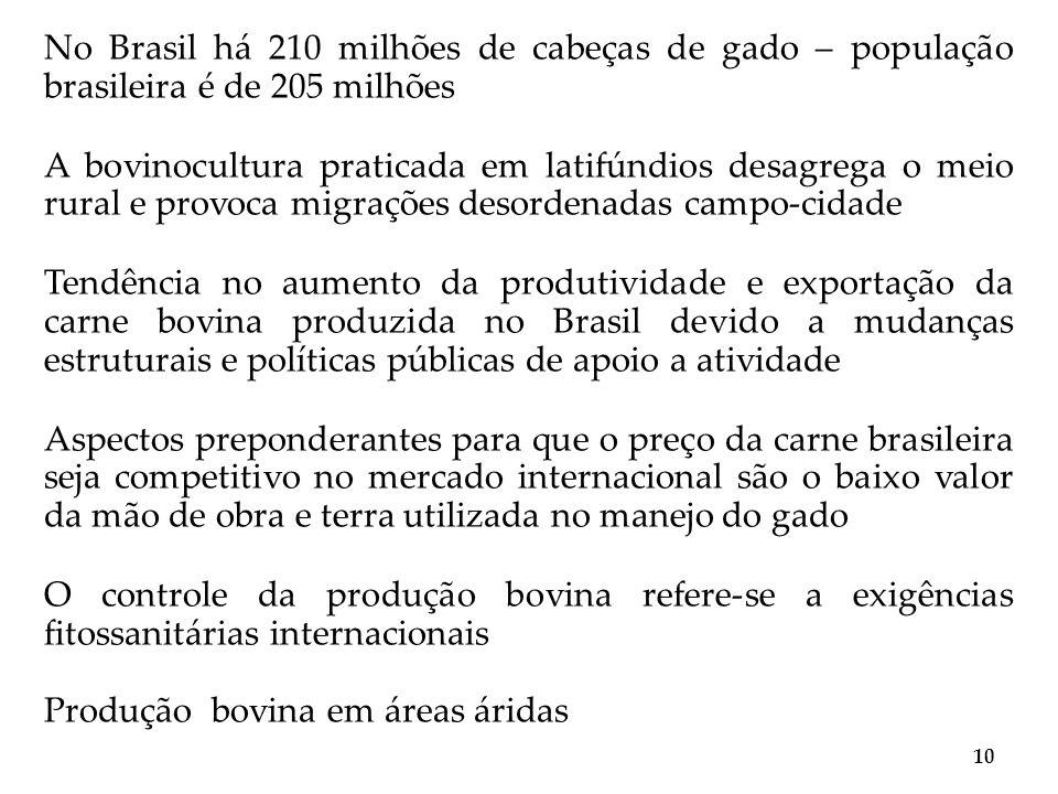 No Brasil há 210 milhões de cabeças de gado – população brasileira é de 205 milhões