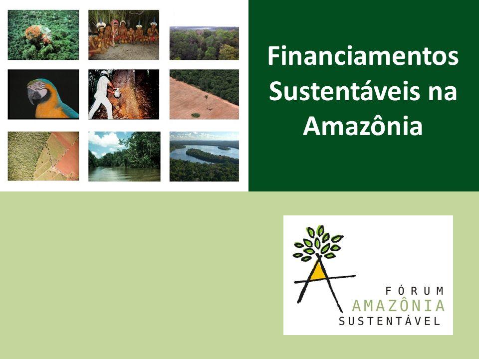 Financiamentos Sustentáveis na Amazônia