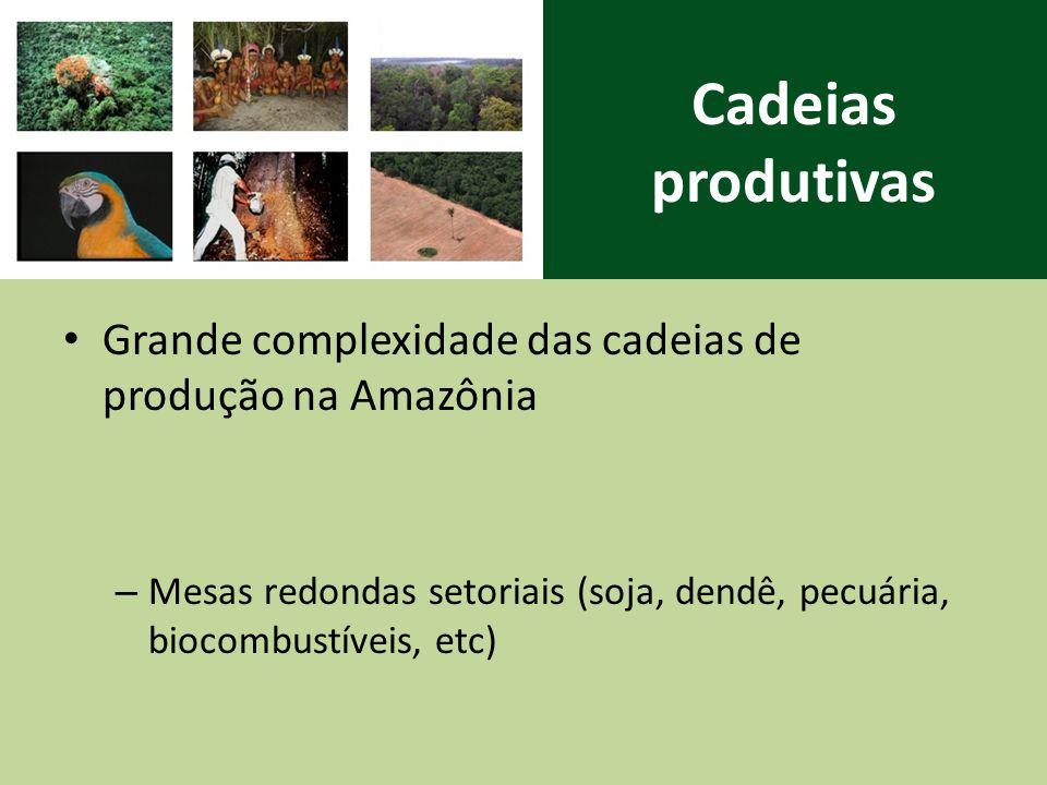 Cadeias produtivas Grande complexidade das cadeias de produção na Amazônia.