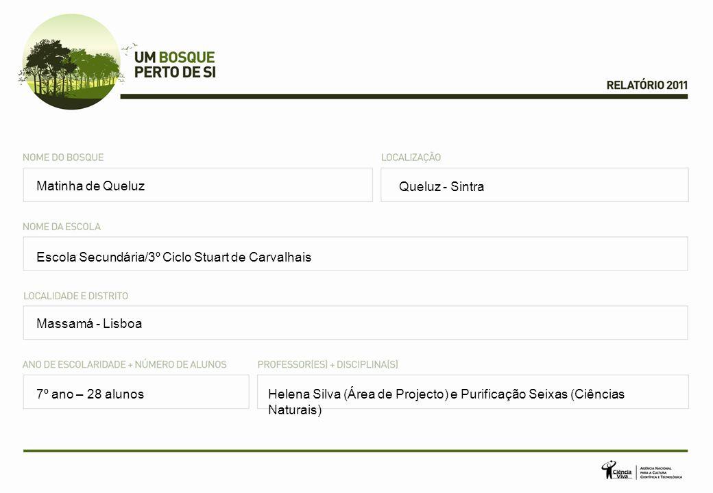 Matinha de Queluz Queluz - Sintra. Escola Secundária/3º Ciclo Stuart de Carvalhais. Massamá - Lisboa.