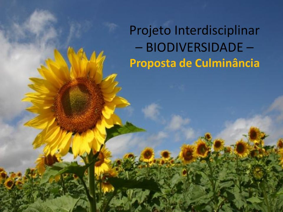 Projeto Interdisciplinar – BIODIVERSIDADE –Proposta de Culminância