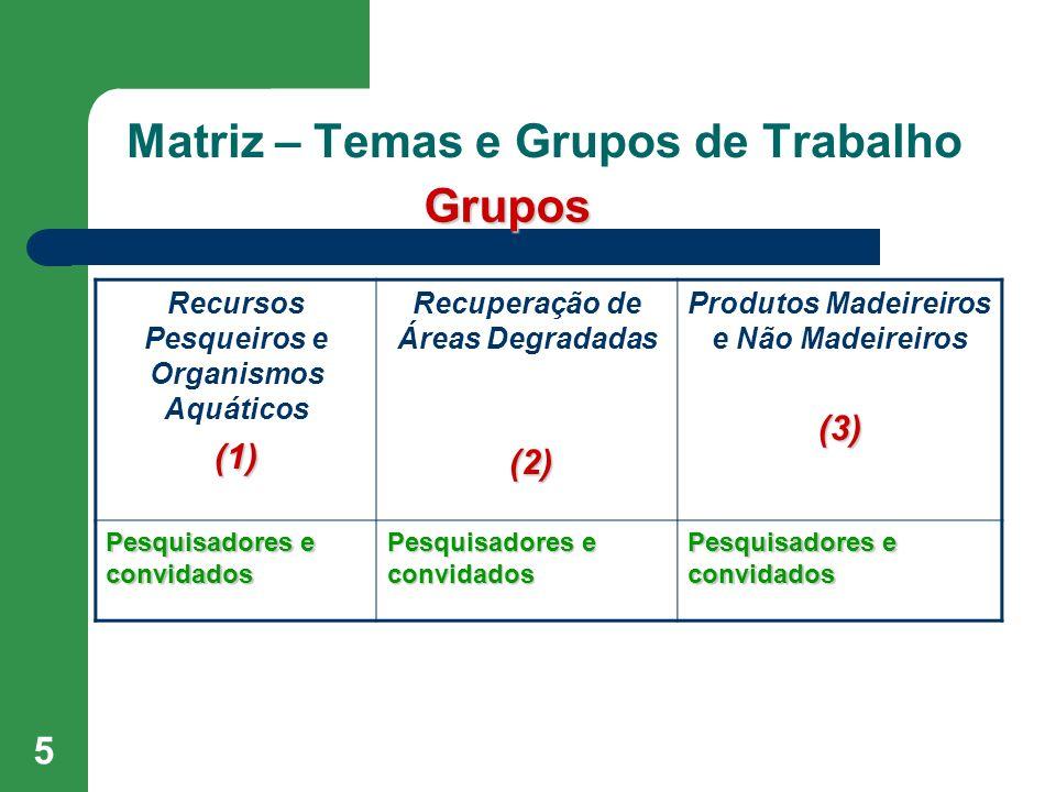 Matriz – Temas e Grupos de Trabalho