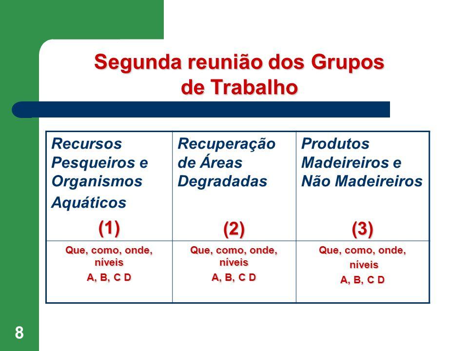 Segunda reunião dos Grupos de Trabalho
