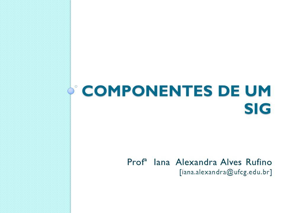 Componentes de um sig Profª Iana Alexandra Alves Rufino