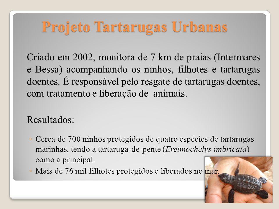 Projeto Tartarugas Urbanas