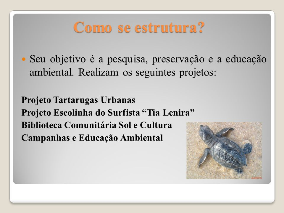Como se estrutura Seu objetivo é a pesquisa, preservação e a educação ambiental. Realizam os seguintes projetos: