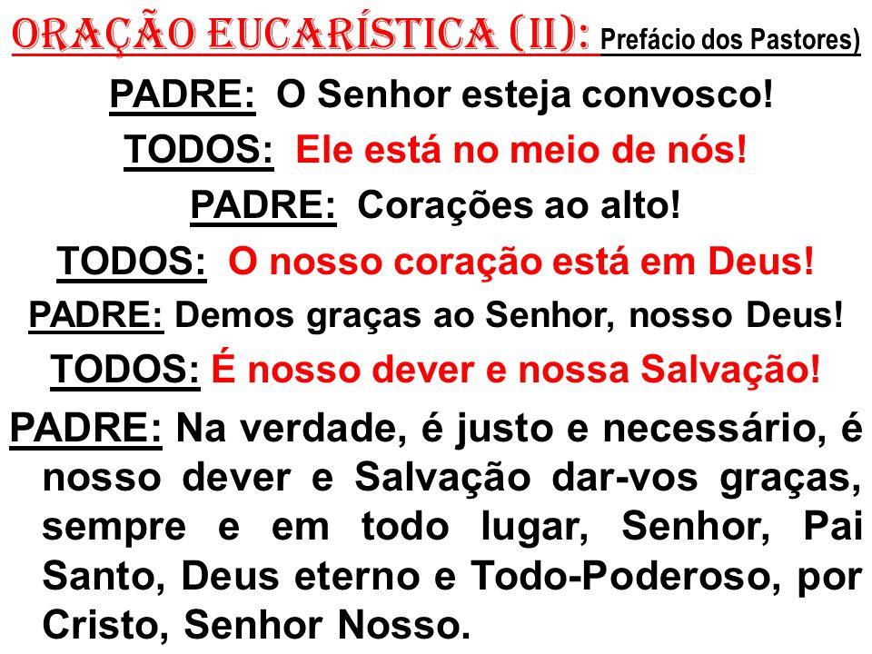 ORAÇÃO EUCARÍSTICA (II): Prefácio dos Pastores)