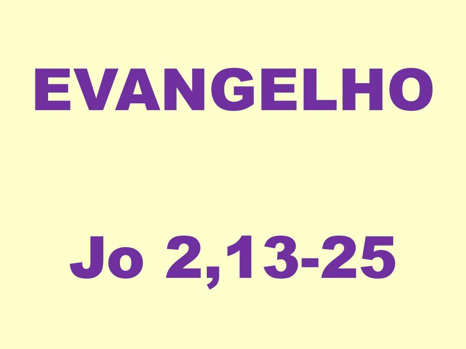 EVANGELHO Jo 2,13-25