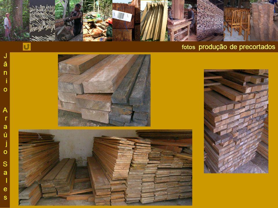 Jânio Araújo Sales fotos produção de precortados