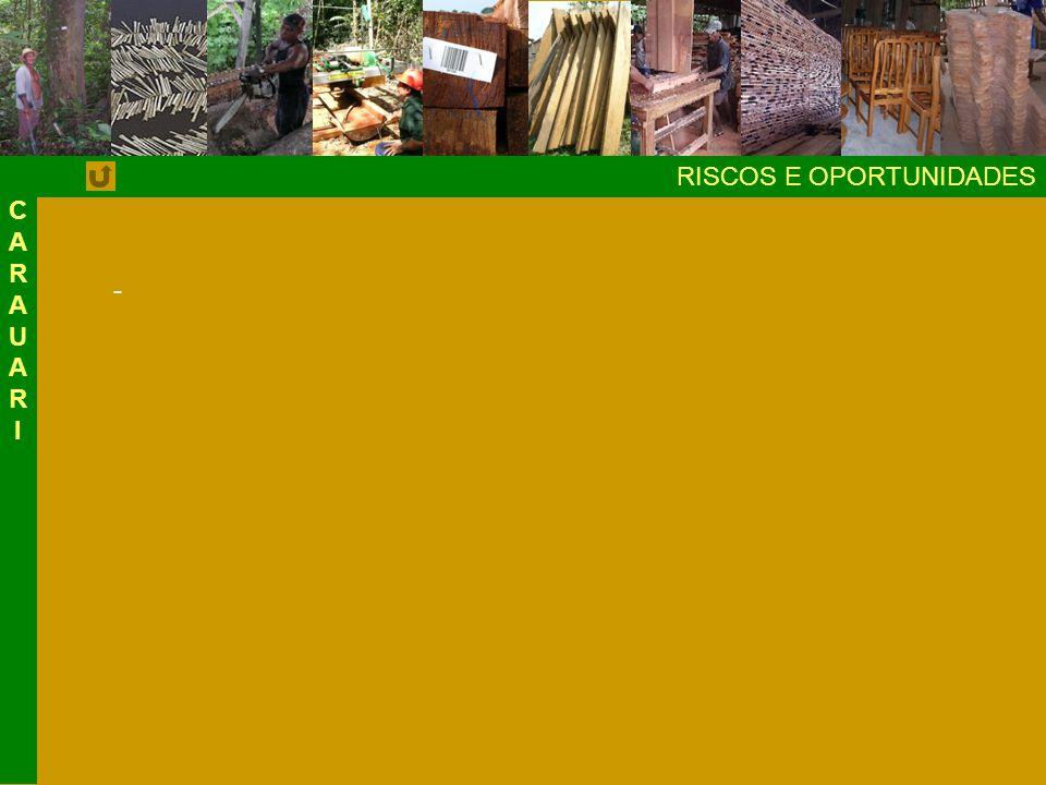 CARAUAR I RISCOS E OPORTUNIDADES