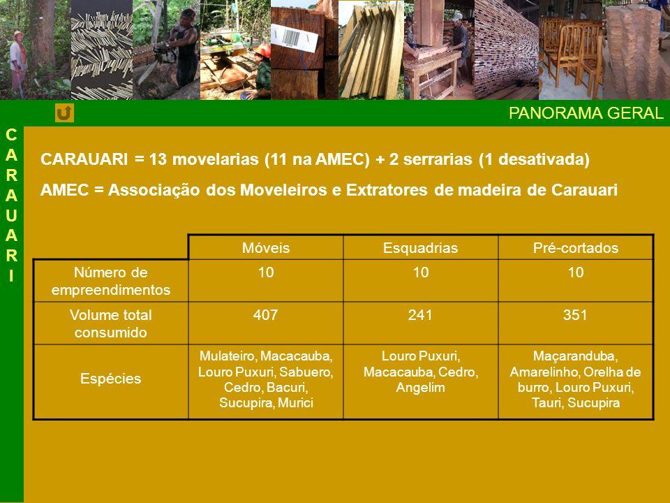 CARAUARI = 13 movelarias (11 na AMEC) + 2 serrarias (1 desativada)