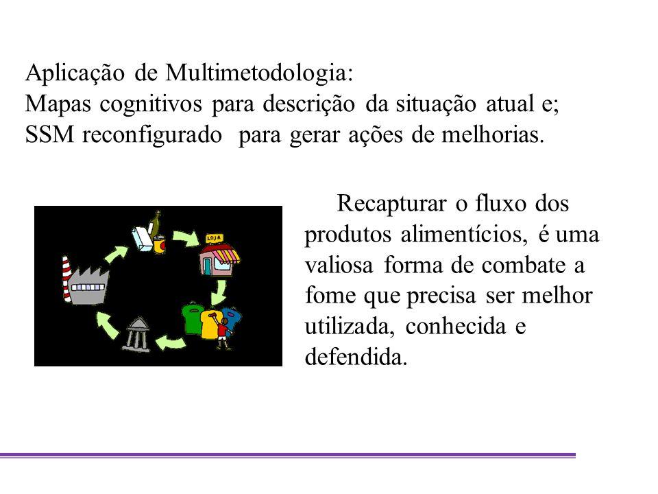 Aplicação de Multimetodologia: