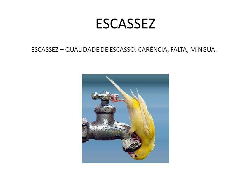 ESCASSEZ ESCASSEZ – QUALIDADE DE ESCASSO. CARÊNCIA, FALTA, MINGUA.