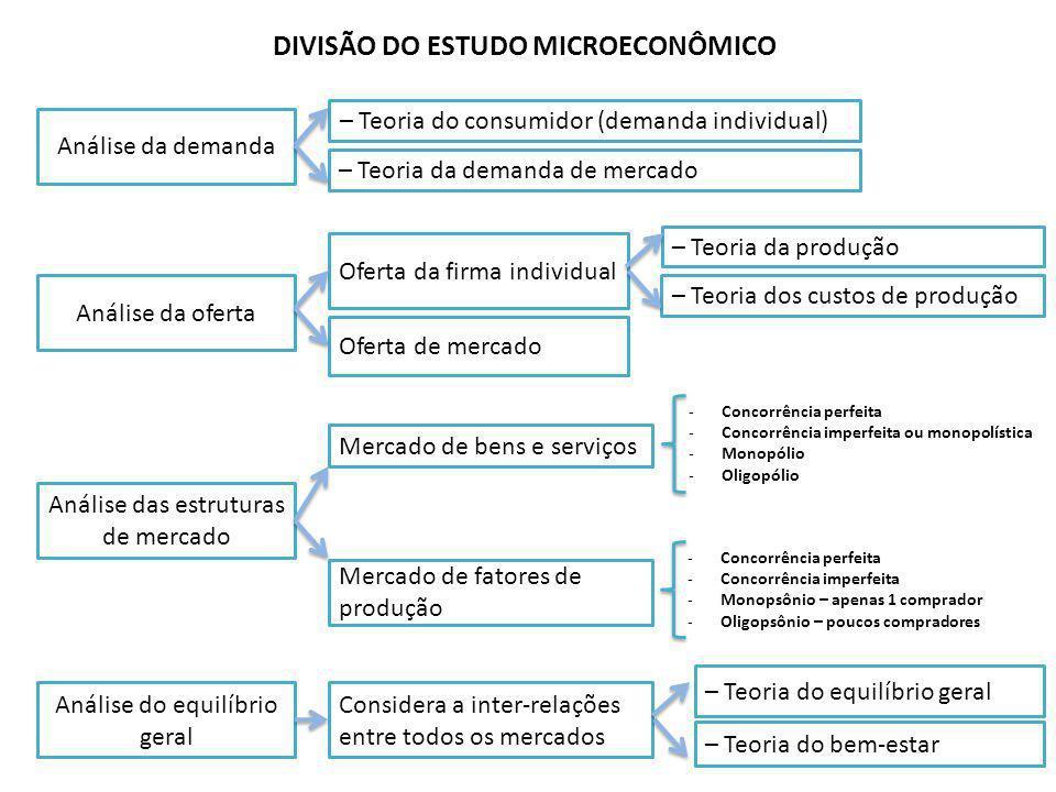 DIVISÃO DO ESTUDO MICROECONÔMICO
