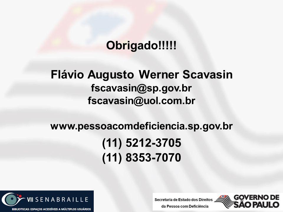 Flávio Augusto Werner Scavasin