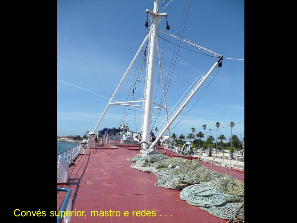 Convés superior, mastro e redes . . .