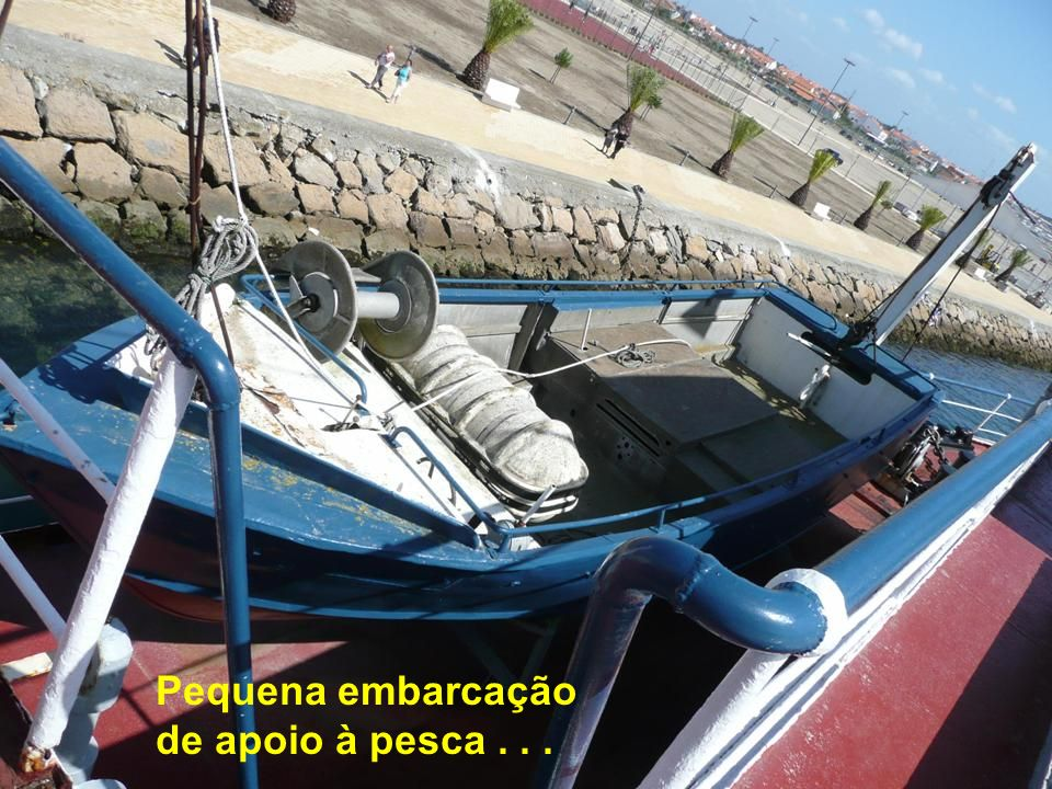 Pequena embarcação de apoio à pesca . . .