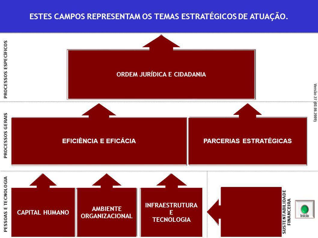 ESTES CAMPOS REPRESENTAM OS TEMAS ESTRATÉGICOS DE ATUAÇÃO.