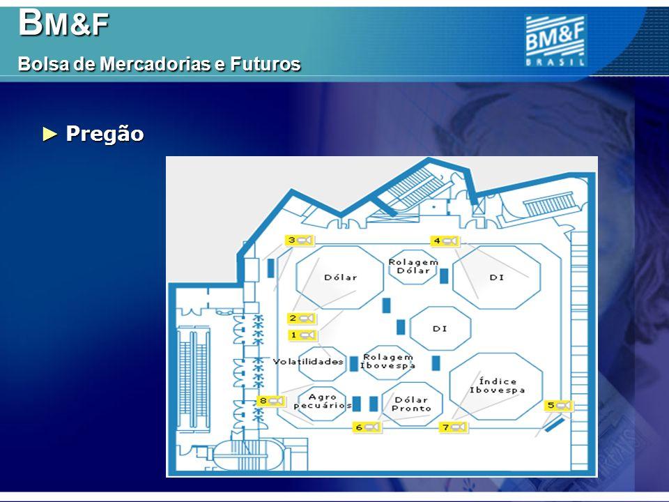 BM&F Bolsa de Mercadorias e Futuros