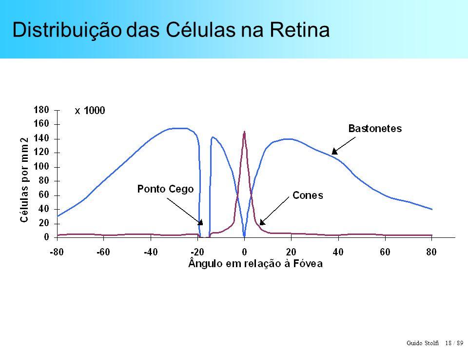 Distribuição das Células na Retina