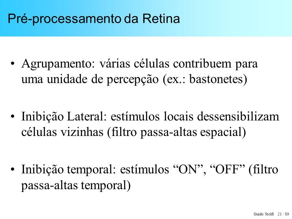 Pré-processamento da Retina
