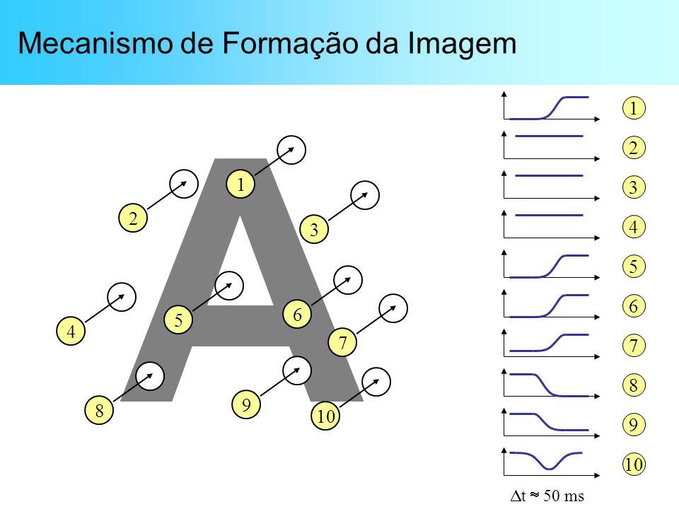Mecanismo de Formação da Imagem