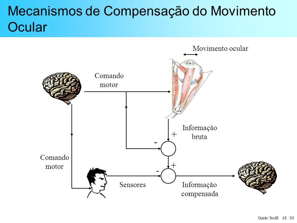 Mecanismos de Compensação do Movimento Ocular