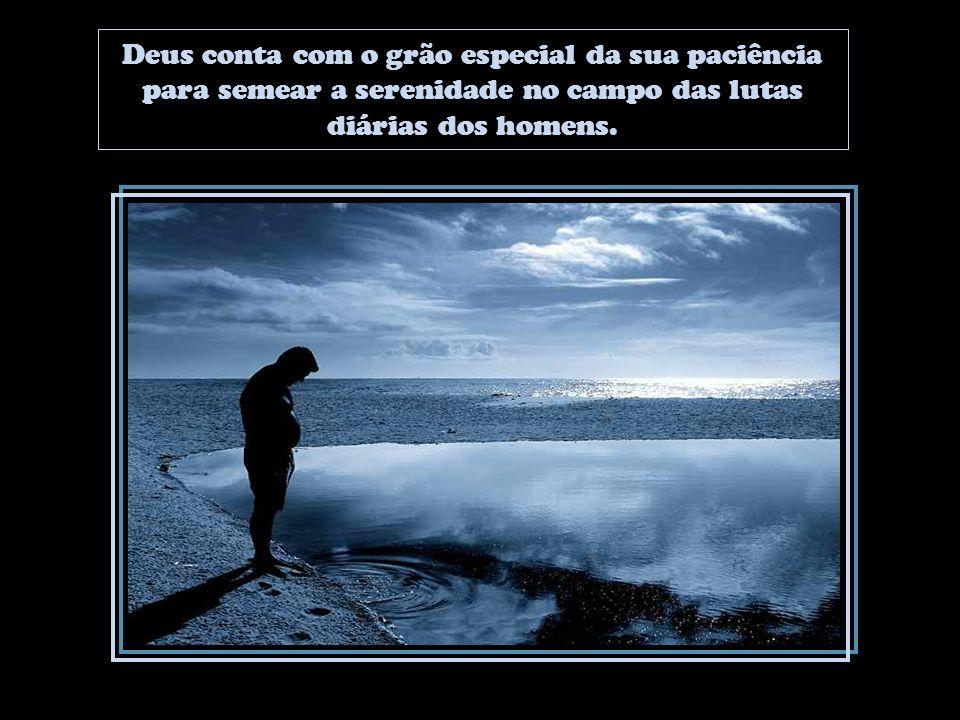 Deus conta com o grão especial da sua paciência para semear a serenidade no campo das lutas diárias dos homens.