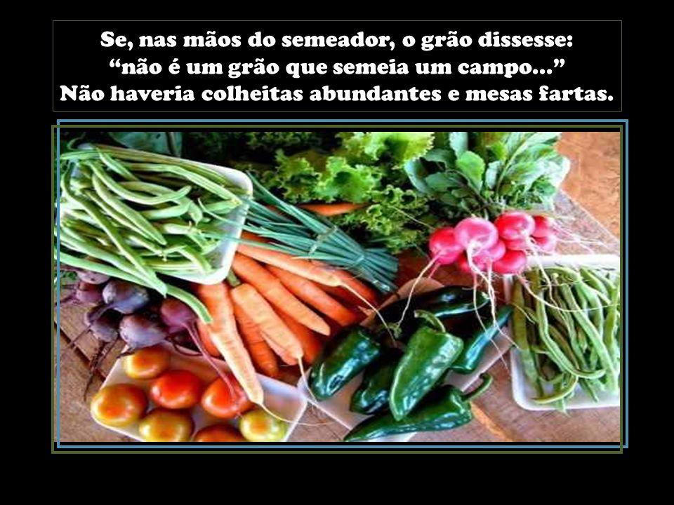 Se, nas mãos do semeador, o grão dissesse: não é um grão que semeia um campo... Não haveria colheitas abundantes e mesas fartas.