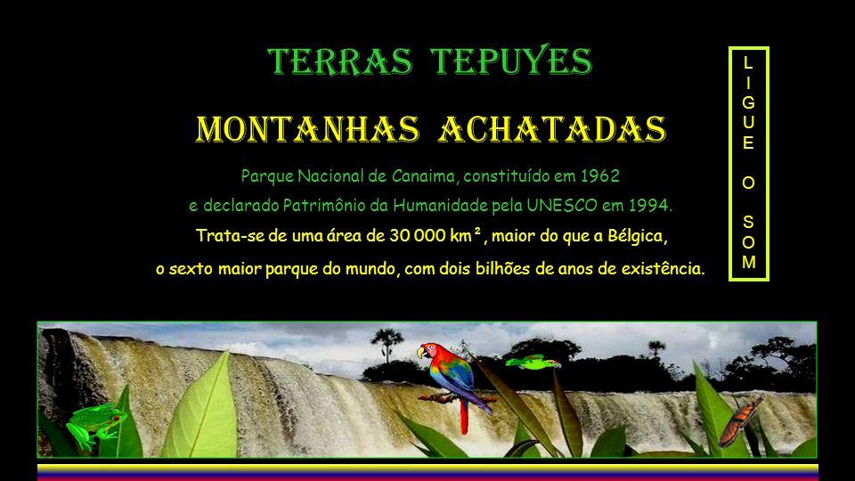 TERRAS TEPUYES MONTANHAS ACHATADAS L I GUE