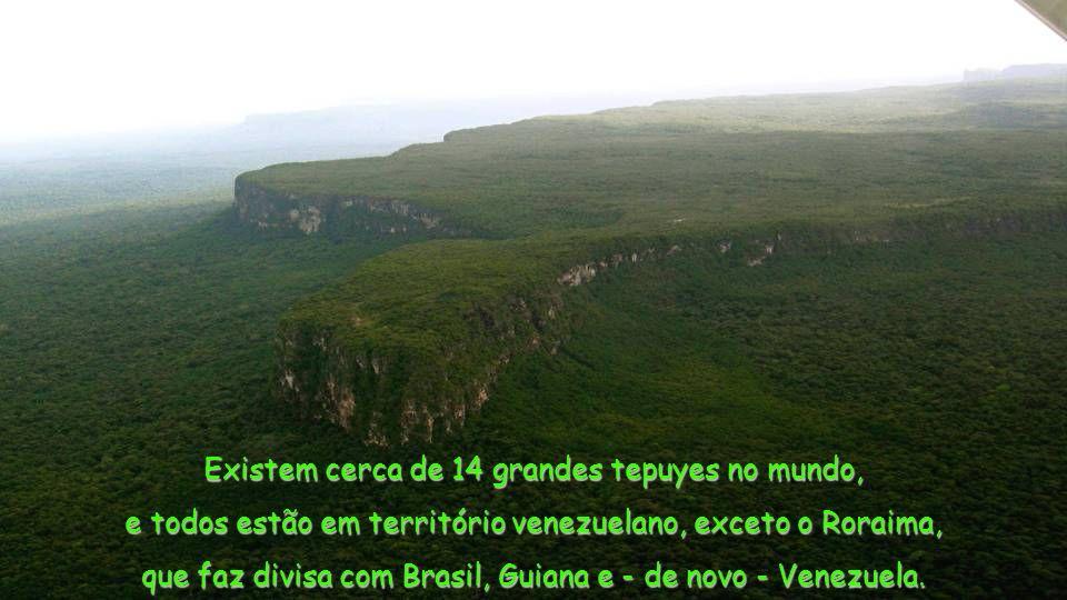 Existem cerca de 14 grandes tepuyes no mundo, e todos estão em território venezuelano, exceto o Roraima, que faz divisa com Brasil, Guiana e - de novo - Venezuela.