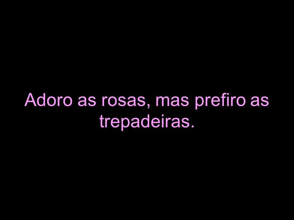 Adoro as rosas, mas prefiro as trepadeiras.