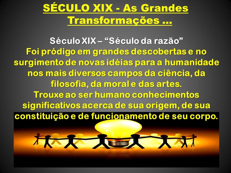 SÉCULO XIX - As Grandes Transformações ...