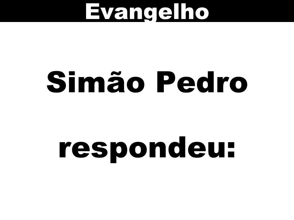 Simão Pedro respondeu: