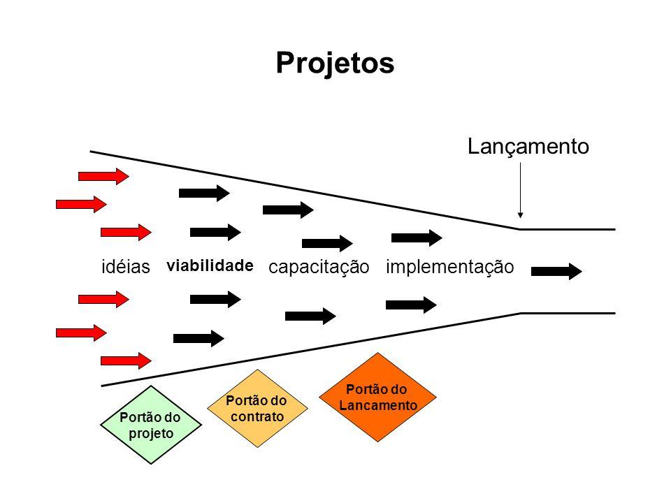 Projetos Lançamento idéias capacitação implementação viabilidade